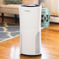 QuietPure Home+ Smoke Air Purifier with HEPA Filters to Remove Smoke  Allergens  Dust  Pet Dander  Mold Spores  Viruses  Odors and VOCs. - B076JJXXJN
